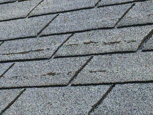 When the protective granules on a shingle have worn off, it's time for a new roof.